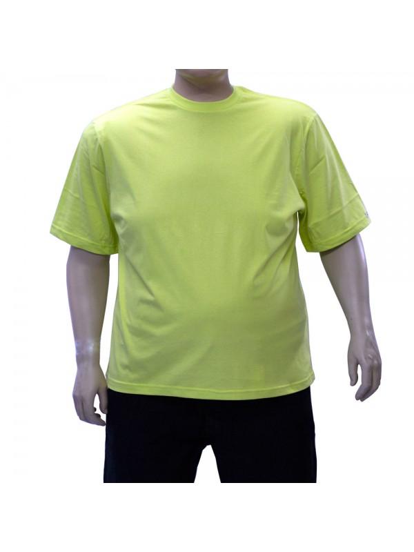 Camiseta Básica Plus Size Pistache